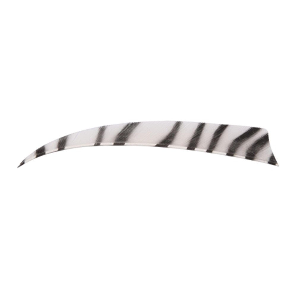 Bearpaw Shield Zebra White/Black